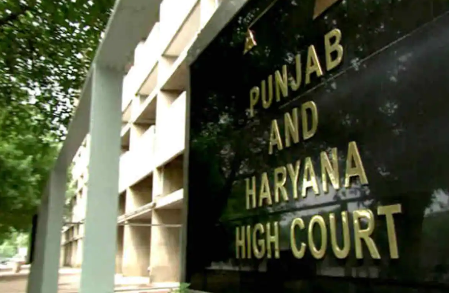 haryana pubab high court