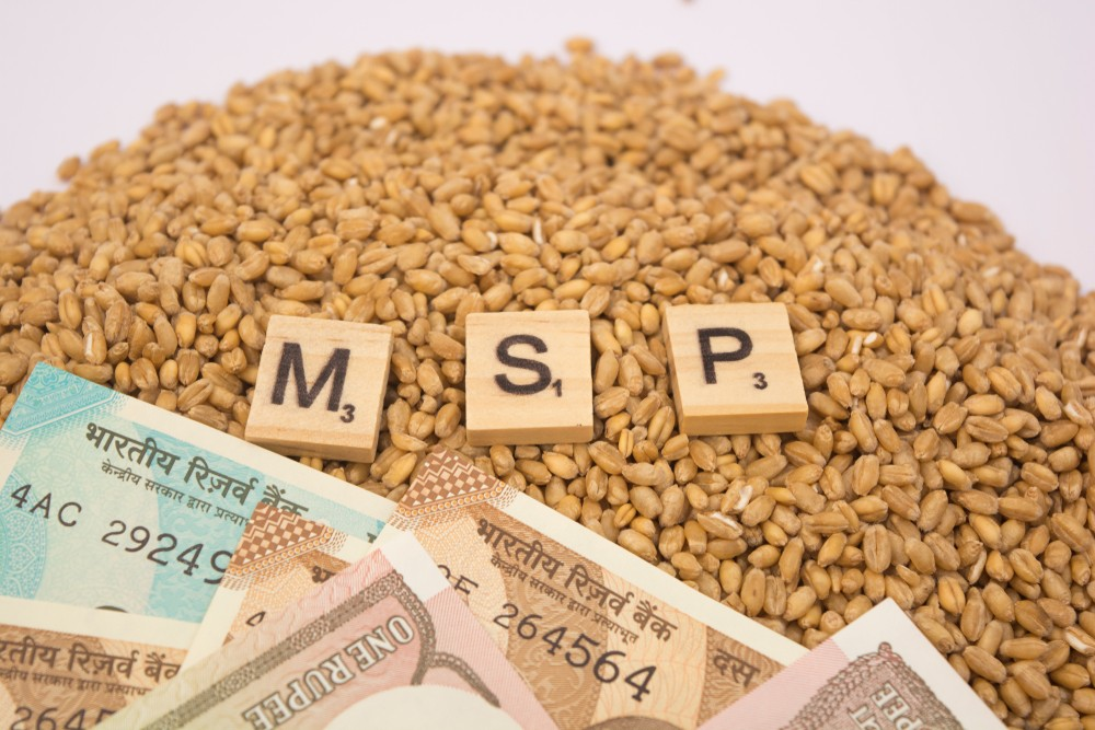 MSP-for-Rabi-Crops