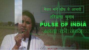 PULS OF INDIA